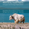Water on the Tibetan Plateau: Ecological and Strategic Implications for the Region