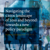 Navigating the CBRN landscape of 2010 and beyond: towards a new policy paradigm